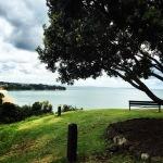 Maungauika, North Head, Auckland